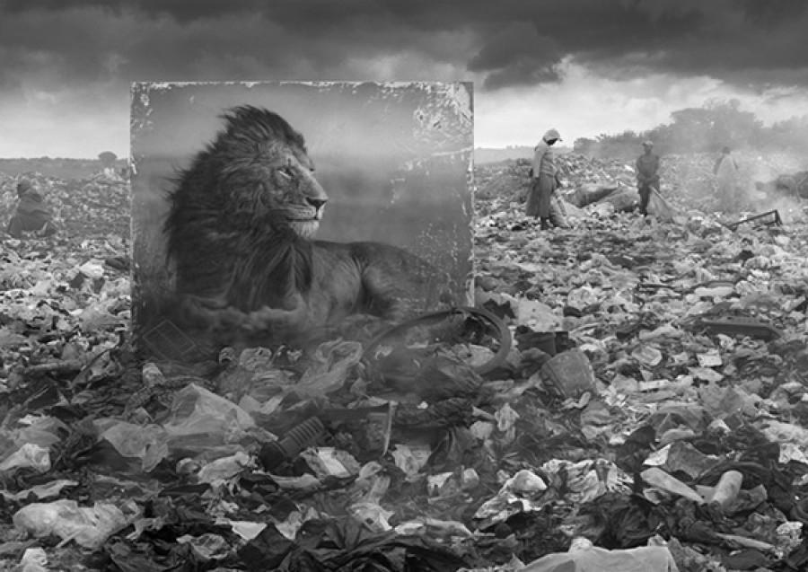 Nick Brandt – Inherit the Dust